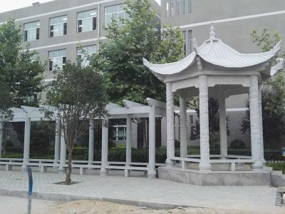 办公楼fang松草白yu石liang亭